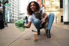 Biodegradable Dog Poop Bags - Dog Waste Bags Wholesale | Innovet Pet Cat Diseases, Pet News, Wholesale Bags, Dog Photography, Big Dogs, Pet Accessories, Dog Friends, Biodegradable Products, Eco Friendly