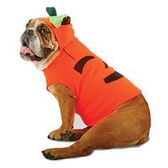 Costumes For All Occasions PM858016 Zelda Pumpkin Pet Medium