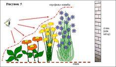 Мобильный LiveInternet Дизайн клумбы на садовых участках | Kandy_sweet - Дневник Kandy_sweet |