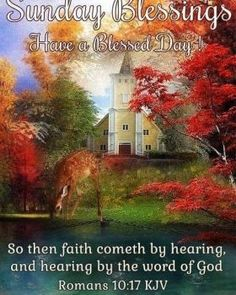 """SONDAY BLESSINGS: Romans 10:17 (1611 KJV !!!!) """" So then faith cometh by hearing, and hearing by the word of God."""" HAVE A BLESSED DAY !!!! Sunday Morning Quotes, Happy Sunday Morning, Happy Sunday Quotes, Its Friday Quotes, Sunday School, Facebook Image, For Facebook, September Quotes, September Calendar"""