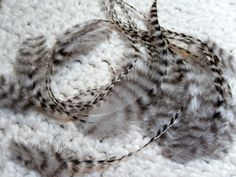 Natural Grizzly Feathers Hair or Craft Feathers by SolDoggie, $5.55