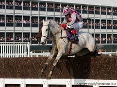 Smad Place returns in the Hennessy Image by www.racehorsephotos.co.uk