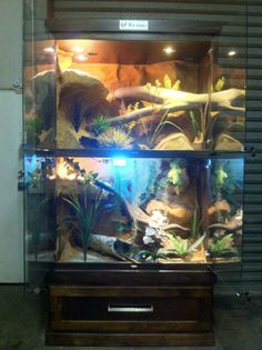 This is one of my exclusive 2 Bay enclosures, it has a desert theme on the top and Forest floor theme on the bottom with a draw underneath, AWESOME!! https://www.facebook.com/pages/HP-Customs-Custom-Reptile-Enclosures/572704122760765