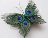 Cool!! peacock butterfly!