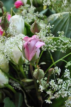 Flower 8