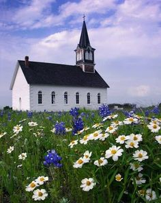 Church and wildflowers