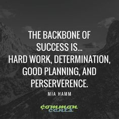 the backbone of success..hard work determination good planning and perserverence! #thecommoncents