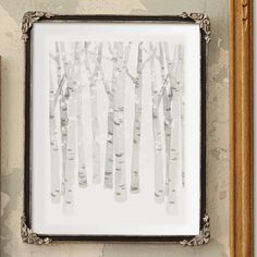 Birch Woods in Winter by Four Wet Feet Studio at minted.com