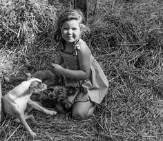 Playing in the hay with dogs. A perfect childhood on a farm in WWII