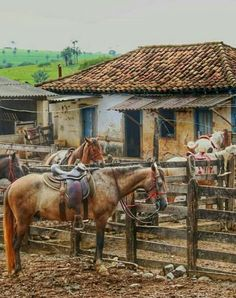 Real home 😊 Landscape Art, Landscape Paintings, Country Life, Country Roads, Farm Art, Cowboy Art, Horse Art, Western Art, Farm Life