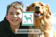 Critter Care is one of the Bear elective adventures for the 2015-2016 Cub Scout program year.  In the current Bear Cub Scout program, it is most similar to  the Pet Care Belt Loop and Pin.  For the Critter Care adventure, Bears learn how to care for pets.  http://scoutermom.com/16357/bear-elective-adventure-requirements-critter-care/