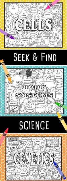Seek & Find Science is perfect for introducing or reinforcing unit material. I love them for notebook title pages!