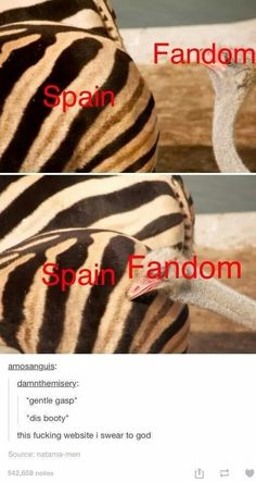 Okayokay....quiet now..... I THINK WE CAN ALL FUNKING AGREE THAT SPAIN'S ASS IS AWESOME!!!! NEARLY AS AWESOME AS PRUSSIA.....Hetalia what did you do to me *drop* :D