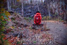 Mount Nemo Conservation Area Hiking (Burlington Nature Photographer) Hiking Trails, Conservation, Ontario, Nature, Nature Illustration, Off Grid, Mother Nature, Canning