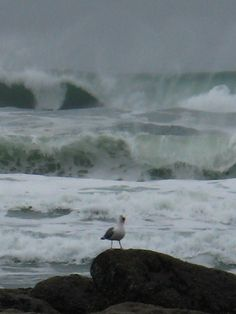 beach storm. A little rain won't ruffle my feathers! ~ Repinned by your friends at SuperHumanNaturals.com