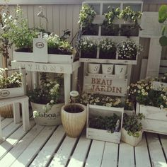 myu-momさんの、薄汚れが気に入ってる,ガーデンピック♡,いつもいいねやコメントありがとう♡,窓から見える景色,ベランダガーデン,ひろった枝,手作りプランター,セリア,カフェ風に憧れている,花粉症お大事に♡,貧乏インテリア,木箱,ミュウママの木箱,のお部屋写真