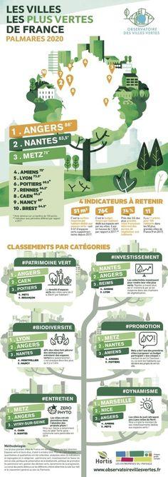 70 Idees De Infographies Rse En 2021 Developpement Durable Infographie Responsabilite Societale Des Entreprises