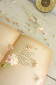 Cada poema es único.  En cada obra late, con mayor o menor grado, toda la poesía... - Octavio Paz