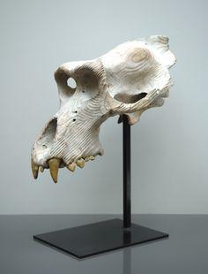 Quentin Garel - Gorilla's skull - 2011 - Bronze - 64 x 52 x 37 cm - Edition de 8 exemplaires