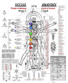 Occult Anatomy.- Incredible image of the occult anatomy of the body, drawn from Kabbalah, Yoga and much more. The image below depicts the occult anatomy of the human body, as projected on the Vitruvian Man (originally done, obviously, by Leonardo da Vinci). It unifies the Tree of Life, the Yogic Chakras, and information from Kundalini Yoga, Tantra, Astrology, Tarot and Alchemy. It's a beast!