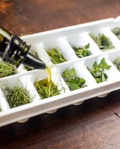 15 Foods You Should Freeze in an Ice Cube Tray is part of Freezing fresh herbs If your freezer makes ice, then your ice cube tray is probably sitting empty, frozen and alone, in the freezer door, or - Freezing Fresh Herbs, Preserve Fresh Herbs, Freeze Herbs, Fresco, Flavored Ice Cubes, Ice Cube Trays, Ice Tray, Food Storage, Food Hacks