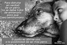 Para disfrutar en verdad de un perro, no se debe tratar de entrenarlo para que sea semihumano. El punto es abrirse uno, a la posibilidad de ...