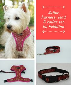 Super cute dog harness, lead and collar set by Pebblina. With a sailor pattern design. Very comfortable and soft on the dogs skin. Cute Dog Harness, Super Cute Dogs, Dog Facts, Online Pet Supplies, Best Dogs, Sailor, Pattern Design, Pets, Navy Sailor