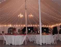 Reception, White, Lighting, Contemporary catering and event planning services, Contemporary catering
