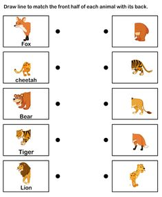 Animal theme, EFL-ESL Worksheets, Preschool Worksheets, Animals Worksheets