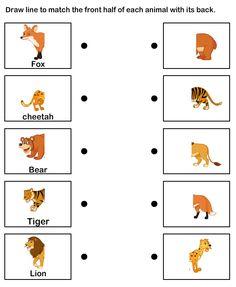 Animal theme Worksheets