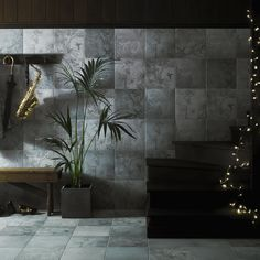 Ted Baker Grey Paradise Multipack Wall & Floor Tiles 9 Per Pack - - Grey Wall Tiles - Grey Tiles - Tiles by Colour - Tiles Grey Wall Tiles, Wall And Floor Tiles, Color Tile, Colour, Ted Baker, Paradise, Images, Packing, Flooring