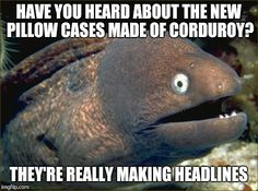 Bad Joke Eel | HAVE YOU HEARD ABOUT THE NEW PILLOW CASES MADE OF CORDUROY? THEY'RE REALLY MAKING HEADLINES | image tagged in memes,bad joke eel,AdviceAnimals | made w/ Imgflip meme maker