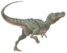 """Alectrosaurus was a small tyrannosaurid from prehistoric Mongolia. It only grew to about 16 feet long – less than half the size of Tyrannosaurus rex. It had the same general tyrannosaur proportions: a large skull, jaws filled with sharp, serrated teeth, and tiny, tiny arms. Its name means """"alone lizard"""" (because when it was discovered, it was the only carnivore of its kind known in that part of the world), but can also be translated as """"unmarried lizard,"""" if you want to sound like its…"""