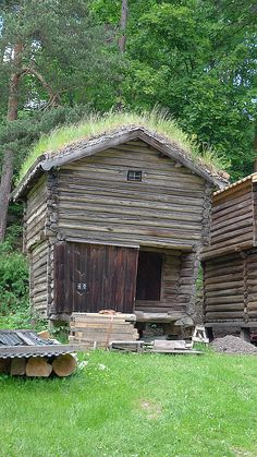 Log Barn With Sod Roof