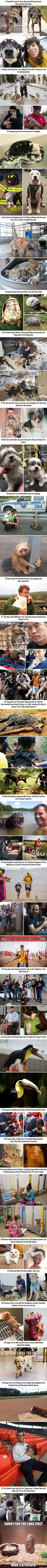 25 Animal Stories That Restored Our Faith In Humanity In 2016