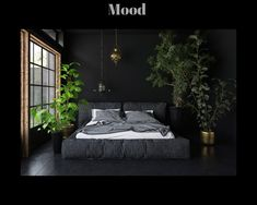 15 Soothing Bedroom Plants to Help You Sleep is part of Grey bedroom Plants - Plants have superpowers, including lulling you off to a blissful state of sleep But not all plants are created equal Learn which are best for the bedroom Black Master Bedroom, Bedroom Green, Home Bedroom, Modern Bedroom, Garden Bedroom, Bedroom Ideas, Black Bedroom Walls, Dark Bedrooms, Black And Grey Bedroom