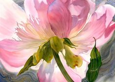Radiant, floral watercolour paintings by Marney Ward  Canadian artist - Marney Ward, is an internationally recognized floral watercolour artist and art instructor. She paints large, glowing floral watercolours, seeking to capture the spirit of the flower in compositions ranging from delicately patterned impressions to bold back-lit close-ups.  I have always felt a deep spiritual connection with flowers. In my work, I seek to reveal not only the essence of the flowers I paint, but also my…