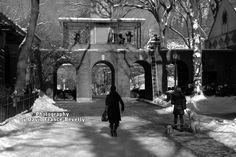 black & white Children's Zoo Central Park, New York City