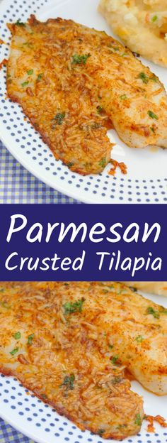 This delicious fish recipe is affordable and is such a quick dinner idea. Also great with cod or pollock. Use different herbs or seasonings with the parmesan on this tilapia for a different flavor eve Baked Tilapia Recipes, Baked Fish, Seafood Recipes, Cooking Recipes, Healthy Recipes, Best Tilapia Recipe, Oven Baked Tilapia, Fresh Fish Recipes, Grilled Fish