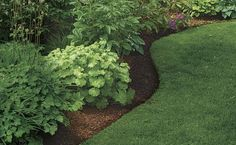 Perfect Edges for Your Beds and Borders | Fine Gardening