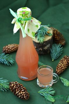 Syrup of pine nuts My Recipes, Cooking Recipes, Canning Pickles, Tea Cafe, Vegetarian Recipes, Healthy Recipes, Romanian Food, Healthy Smoothies, Remedies