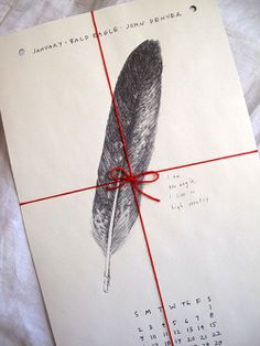 The Wild Unknown feathers calendar
