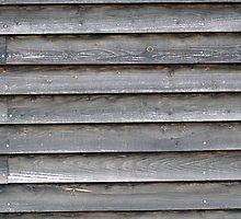 Holz 2 von Jasardpu