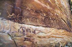 Triassic Park: Petrified Forest National Park
