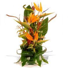 http://www.mayweddingflowers.com/wp-content/uploads/2009/12/Wedding-Anniversary-Flowers-Bird-of-Paradise3-300x300.jpg