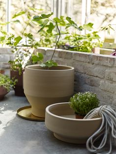 A round-up of the 20 best minimal plant pots and planters, from small glazed ceramic designs to metal planters that can be raised on stands, from to Healthy Prawn Recipes, Healthy Filling Snacks, Healthy Food List, Healthy Eating For Kids, Kids Diet, Potted Plants, Plant Pots, Easy Garden, Garden Ideas