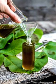 How do walnut leaves work and how do you use them to create an anti-mosquito spray? Beauty Tips For Face, Diy Beauty, Natural Medicine, Herbal Medicine, Mosquito Spray, Anti Mosquito, Healthy Beauty, Alternative Medicine, Natural Cures