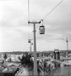 View of the sky trail amusement ride at Pirates World - Dania, Florida 1967