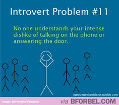 Exactly!  I am not a fan of any phone conversation and I pretty much refuse to answer the door...there is a continuum of introvert/extrovert and I'm very close to the middle..but still find myself uncomfortable with these concepts....