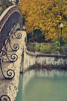 Foot Bridge @ Elizabeth Park in Trenton, Michigan